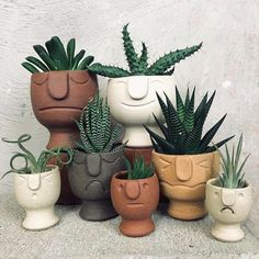 Plant decoration / Pflanzen Liebe Bester Kaktus und Sukkulent How to select the right color clothes? Cacti And Succulents, Planting Succulents, Planting Flowers, Succulent Planters, Cactus Plants, Propagate Succulents, Succulent Containers, Hanging Planters, Succulents Garden
