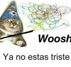 Cute Memes, Dankest Memes, Funny Images, Funny Pictures, Meme Stickers, Spanish Memes, Meme Faces, Stupid Funny Memes, Mood Pics