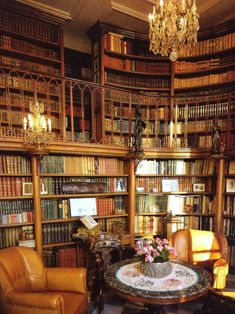 63 Ideas Home Library Ideas Bookcases Book Nooks Cozy Library, Library Room, Dream Library, Future Library, Home Library Design, Home Office Design, Hotel France, Library Inspiration, Library Ideas