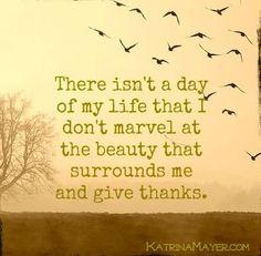 Give thanks quote via www.KatrinaMayer.com