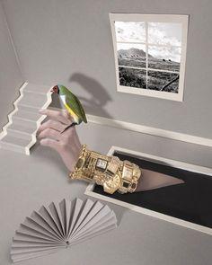 1+1 - Photography - Jean-Pacôme Dedieu - Accessories