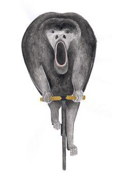 Poster : Howler Monkeys / Art Print : Animal on Bike Flying Lemur, Monkey Art, How To Draw Hands, Lion Sculpture, Owl, Watercolor, Statue, Bird, Art Prints