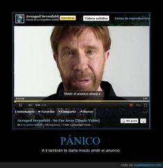 Sí omites el anuncio de Chuck Norris... Chuck Norris te dara un super puñetazo muy fuerte.Tienes que ver el vídeo Chuck Norris World of Warcraft of Chuck Norris.