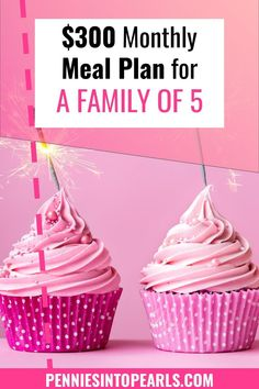When it comes to meal planning I have only one goal in mind, keep the entire month of eating for our family of five under $400!THE only objective and I easily make it work every single month.Take a look for yourself! I'm sharing with you exactly what our family will be eating this month in our monthly meal plan and also giving you the exact penny amount we spent on groceries for the entire month! Money Saving Meals, Save Money On Groceries, Monthly Meal Planning, Financial Planning, Frugal Living Tips, Frugal Tips, One Income Family, Ways To Get Money, Setting Up A Budget