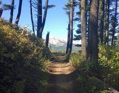 Things to do in Bozeman - Bike the Bangtail Divide #bozeman #montana