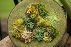 Earth Witch:  #Earth #Witch ~ Moss Embroidery.