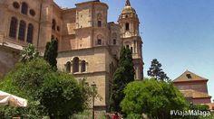 Vistas de la parte trasera de la Catedral desde sus jardines.