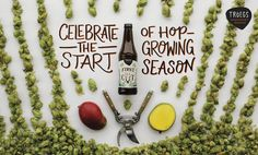 """458 Likes, 9 Comments - Tröegs Independent Brewing (@troegsbeer) on Instagram: """"Each spring, hop growers dust off their pruning shears and trim the first shoots, bolstering the…"""""""