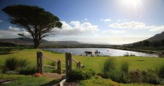 Best gourmet picnics in the Cape – The Inside Guide Places To Travel, Places To See, Picnic Spot, Paradise On Earth, Weekends Away, Lush Garden, Staycation, Cape Town, Weekend Getaways
