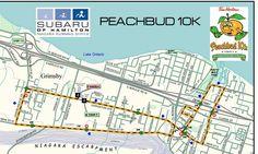 Next up - Peachbud (Grimsby) 10k