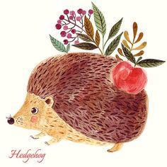 Cute HEDGEHOG with apple in WATERCOLOR  technique by MoleskoStudio
