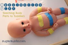 By the Sugar Aunts: Teach Toddlers Body Parts with baby dolls and band aides. Imagination Play at it's finest!