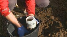 Futuris: la calidad del suelo que pisamos