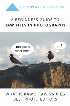 How shooting in Raw can help your photography. Learn what you need to edit Raw files and try for yourself with free trials of the best Raw editing software