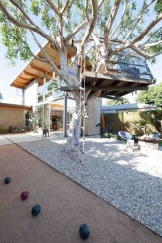 A-frame tree house in Venice