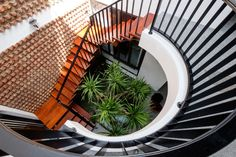 Image 33 of 33 from gallery of PH House / Mét Vuong Studio. Design Entrée, Design Patio, Modern Design, House Design, Logo Design, Staircase Design Modern, Curved Staircase, Modern Stairs, Staircase Ideas
