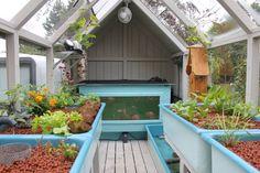 Mediamatic.net - Greenhouse aquaponics