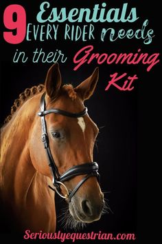 Horse grooming is an essential part of horse ownership and important of equestrian care. Every rider needs a good horse grooming kit with all the essentials