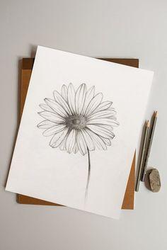 Daisy Drawing, Flower Art Drawing, Art Sketches, Art Drawings, Michaelmas Daisy, Daisy Art, Boho Chic Living Room, Boho Decor, Line Art