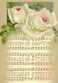 White roses with sheet music - Gypsy jingles boutique