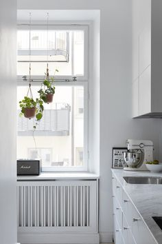 Hanging plants in window - try in bedroom