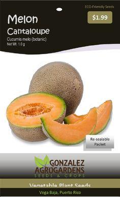 Cantaloupe melon seeds packet