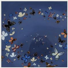 Jenni Murphy - Circle of Butterflies - limited edition print