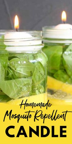 Diy Mosquito Repellent, Mosquito Repelling Plants, Mosquito Spray, Insect Repellent, Household Cleaning Tips, Cleaning Recipes, Home Remedies, Natural Remedies, Homemade Candles