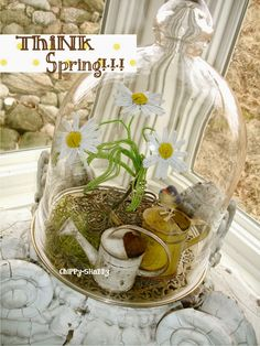 Spring decor idea - glass cloche or apothecary jar with birds, flowers, etc. Can switch wood base for a milk glass cake stand. Large Glass Jars, Glass Domes, Cloche Decor, The Bell Jar, Bell Jars, Shabby, Pots, Decorating Coffee Tables, Apothecary Jars