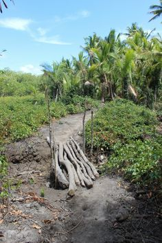 Hiking the volcanic Yasawa Islands of Fiji.