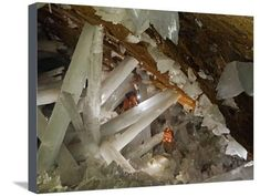 Cavers climbing a web of gypsum crystals Photographic Print by Peter Carsten at AllPosters.com