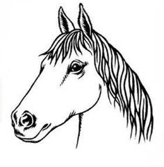 horse Head Template   ... .com/itm/Flaming-Horse-Head-Airbrush-Stencil-Template-/150824033286