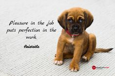 Aristotle / Pleasure in the job puts perfection in the work.