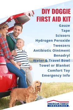 Your dog is more than just a pet. They are your four-legged running buddy, your fluffy companion and the cutest protector of the family. Keeping a doggie first aid kit with you when you take your pup out for a hiking trip or swim in the lake can keep your best friend safe. Here's everything you'll need to make your own portable doggie care kit. Running Buddies, Emergency Vet, Insurance Quotes, First Aid Kit, Safety Tips, Four Legged, Feel Good, Pup, Best Friends
