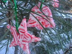 Edible ornaments using candy cane hard candy. You bake in oven so it melts and gets in the shape you want using a cookie cutter.