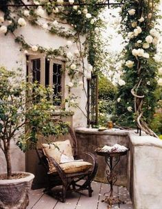 French terrace small French garden ideas climbing roses