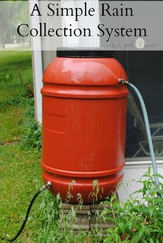 A Simple Rain Collection System. Collecting rainwater is great for your plants and saves you money. - We Got Real