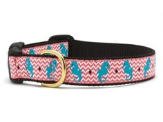 Seahorse Dog Collar