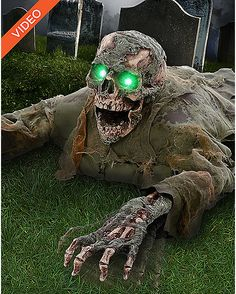 Find spooktacular deals on Halloween Animatronics that'll make Halloween 2020 one for the record books. No one does Halloween better than Spirit. Spirit Halloween Coupon, Scary Food, Haunted Hayride, Halloween Yard Decorations, Skull Decor, Scary Halloween, Creepy, Spirit Halloween Animatronics, Inspiration