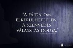 idézet, bölcsesség