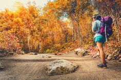 Go Hiking, Romantic Getaway, Whistler, Business Travel, Scenery, To Go, Mountains, Fall, Blog