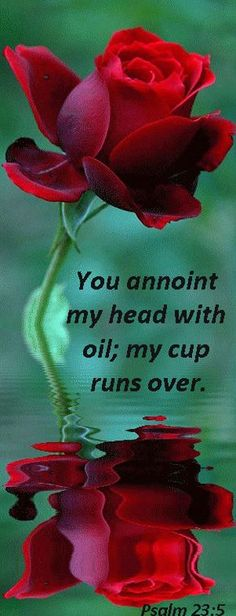 Psalm 23:5 - Amen❣❣ I have been studying anointing and ask the Lord to anoint Heather, and if someone else could also would be great.