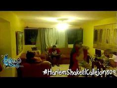 Harlem Shake de elcallejon809.com #Video - Cachicha.com