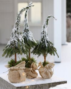 Fordi det begynner å nærme seg?, har jeg samlet litt jule inspirasjon som j… Because it is getting closer?, I have gathered some Christmas inspiration that I have created over the past few years. Little Christmas Trees, Natural Christmas, Rustic Christmas, Simple Christmas, Winter Christmas, Christmas Home, Christmas Ideas, Magical Christmas, Christmas Projects