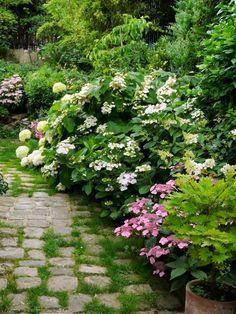 Visiter un jardin anglais luxuriant . Natural Garden, Lush Garden, Shade Garden, Dream Garden, Garden Paths, Garden Landscaping, Garden Cottage, Land Scape, Garden Inspiration