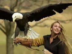 Aves de rapina ; ).