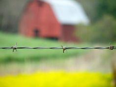 Timmy Abell • North Carolina Red Barn