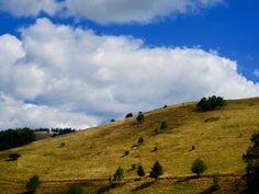 # Hill Grass Sky