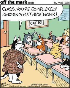 So THAT'S where they learn to ignore their humans.