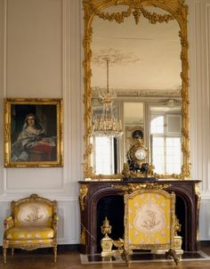 France, Palace of Versailles, Madame Victoire's apartment, grand corner studio with wooden paneling by Verberckt, Detail of fireplace, (UNESCO World Heritage List, 1979), 18th century